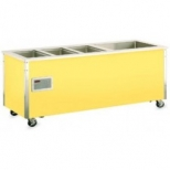 Hot and Cold Combo Food Stations